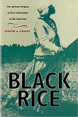 Judith Carney Black Rice 1