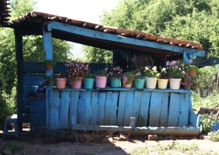 Outdoor Kitchen Michoacán