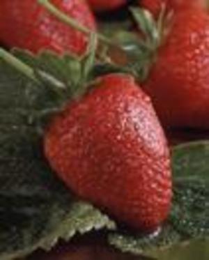 Kitchen6strawberry