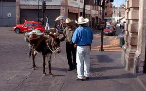 Zacatecas_bebidas