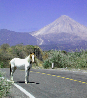 Volcano_and_horse_2